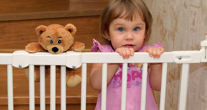 Best Baby Gate With Pet Door